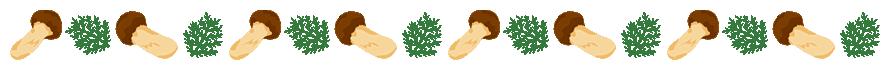 松茸とヒノキ(サワラ)の葉のライン飾り罫線イラスト(W870×H50px)