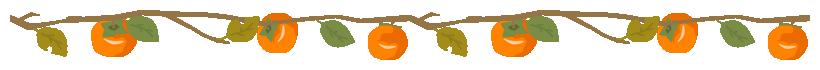 柿の木の枝に実ったカキのライン飾り罫線イラスト(W800×H50px)