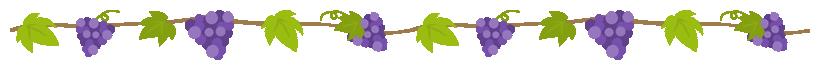 葡萄のツルに実ったブドウのライン飾り罫線イラスト(W800×H50px)