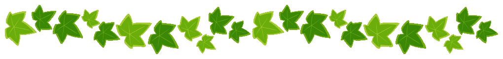 アイビー(蔦・つた)のライン飾り罫線イラスト(W1000×H100px)