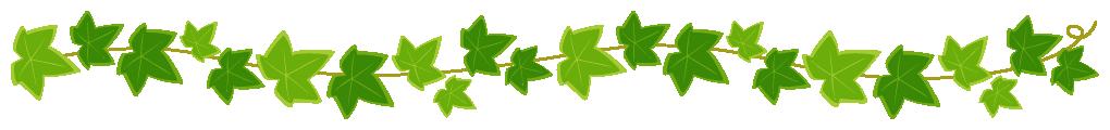 蔓(つる)が絡んだアイビー(蔦・つた)のライン飾り罫線イラスト(W1000×H100px)