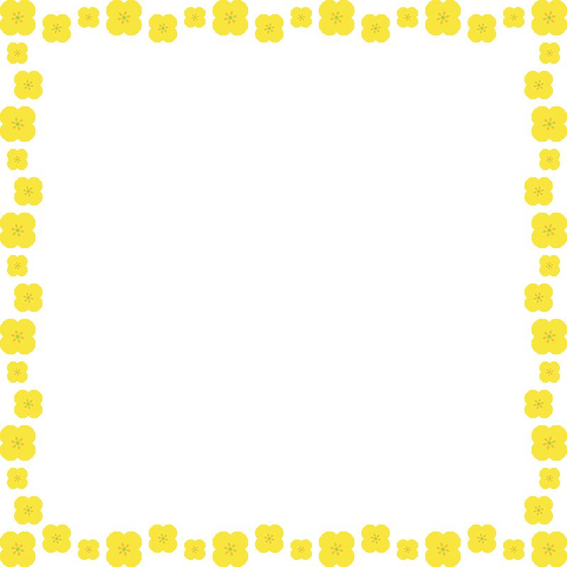 菜の花のフレーム飾り枠イラスト<正方形>