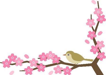 鴬(ウグイス)と桜の木のコーナーフレーム飾り枠イラスト<下>