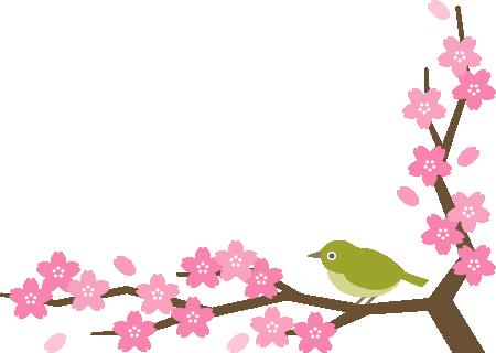 メジロと桜の木のコーナーフレーム飾り枠イラスト<下>