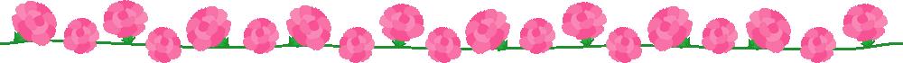 ピンクのカーネーションのライン飾り罫イラスト