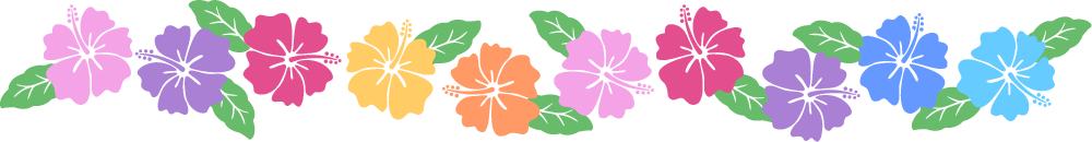 ハイビスカスのライン飾り罫線イラスト<カラフル>