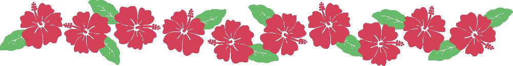 ハイビスカスのライン飾り罫線イラスト<赤>