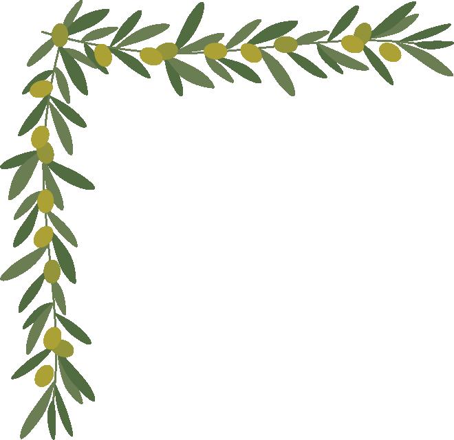 オリーブ(葉・実)のコーナーフレーム飾り枠イラスト(W660×H640px)