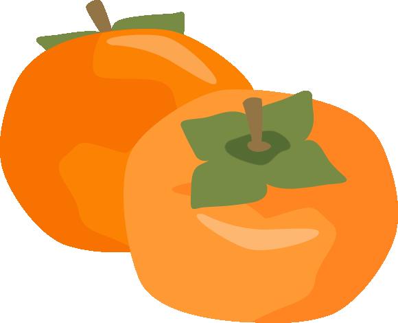 柿(カキ)のイラスト<2個>