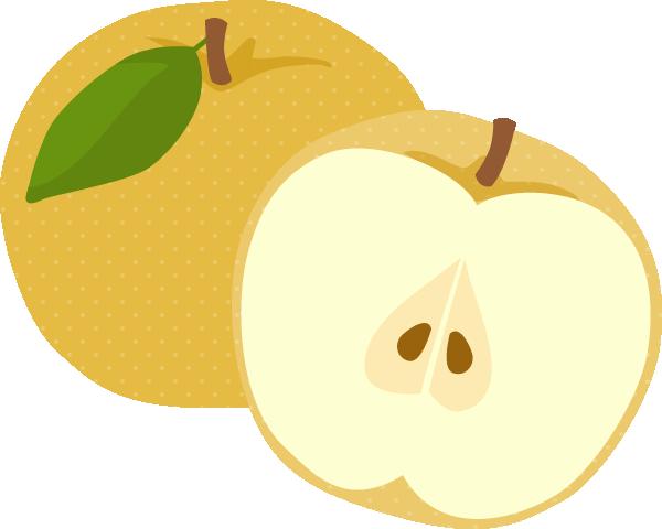 梨(ナシ)のイラスト<2個>