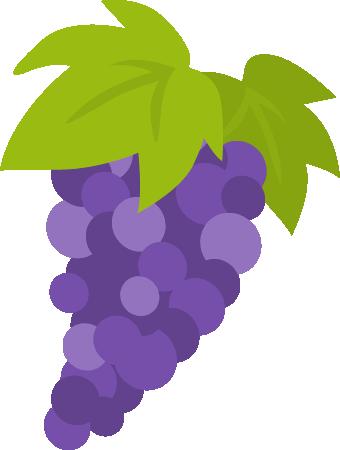 葡萄(ブドウ)のイラスト<1房>