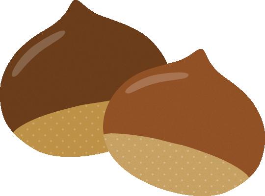 栗(くり)のイラスト<2個>