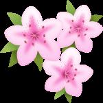 つつじ(躑躅)の花のイラスト