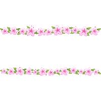 つつじ(躑躅)の花のライン飾り罫線イラスト