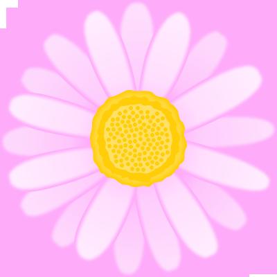 マーガレットの花のイラスト<ピンク>
