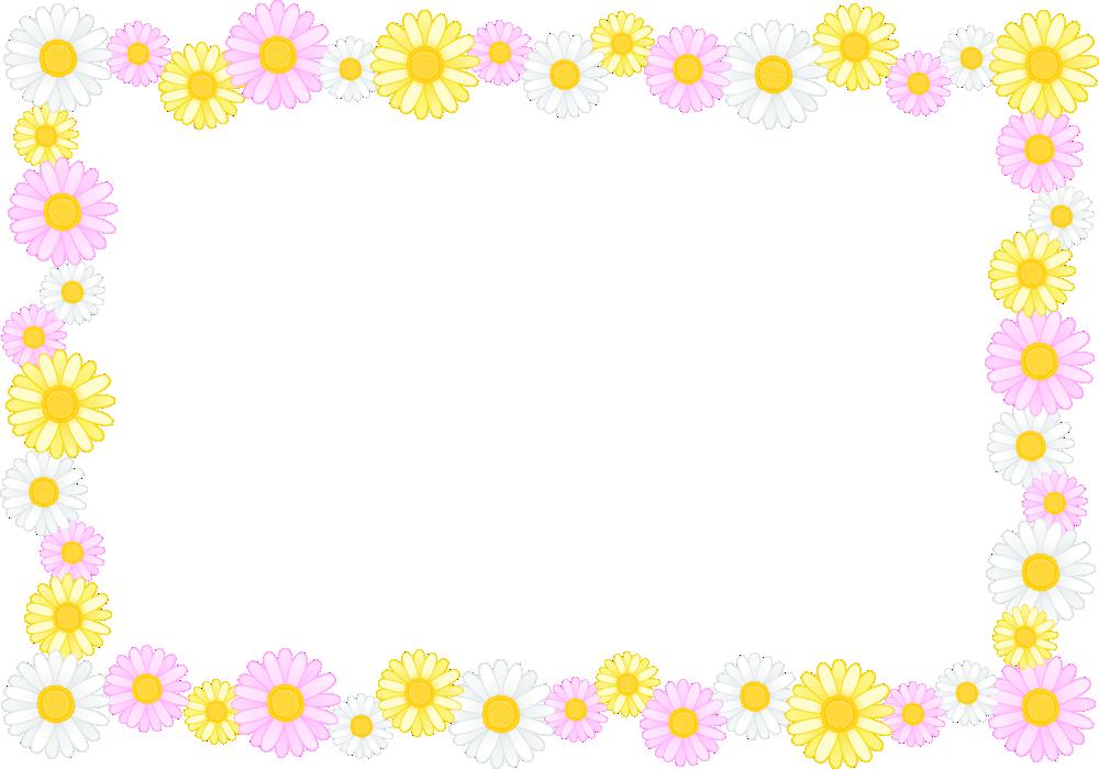 マーガレットの花のフレーム囲み枠イラスト<長方形>