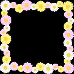 マーガレットの花のフレーム囲み枠イラスト