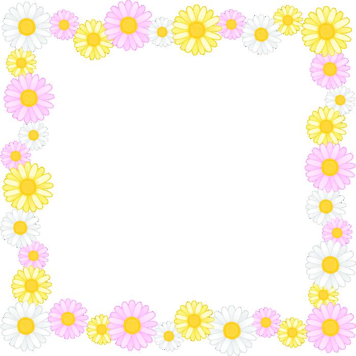 マーガレットの花のフレーム囲み枠イラスト<正方形>
