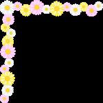 マーガレットの花のコーナー飾り枠フレームイラスト
