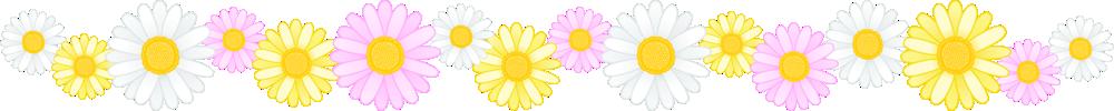 マーガレットの花のライン飾り罫線イラスト<大>