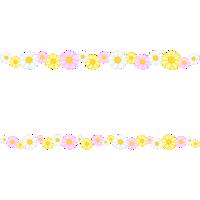 マーガレットの花のライン飾り罫線イラスト