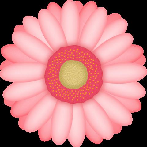 ガーベラの花のイラスト<ピンク色>