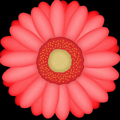 ガーベラの花のイラスト<赤色>