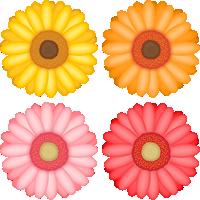 ガーベラの花のイラスト