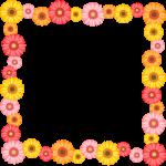 ガーベラの花のフレーム囲み枠イラスト