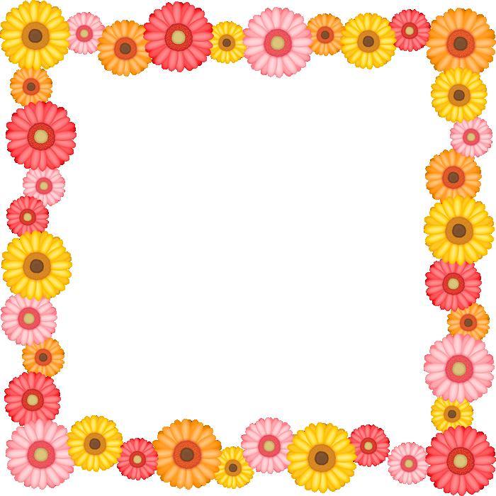 ガーベラの花のフレーム囲み枠イラスト<正方形>