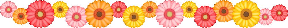 ガーベラの花のライン飾り罫線イラスト<大>