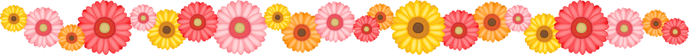 ガーベラの花のライン飾り罫線イラスト<小>