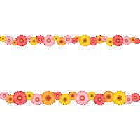 ガーベラの花のライン飾り罫線イラスト
