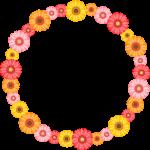 ガーベラの花のリース風フレーム枠イラスト