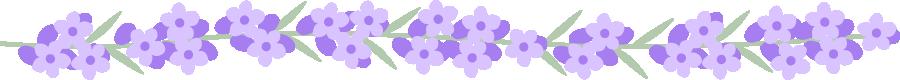 ラベンダーの花のライン飾り罫線イラスト<大>