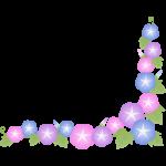 朝顔(あさがお)の花のコーナーフレーム枠イラスト