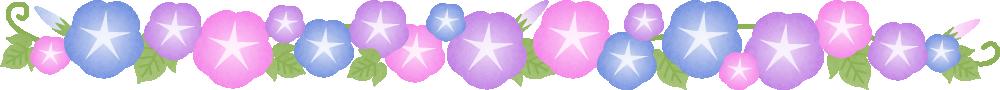 朝顔(あさがお)の花のライン飾り罫線イラスト<小>