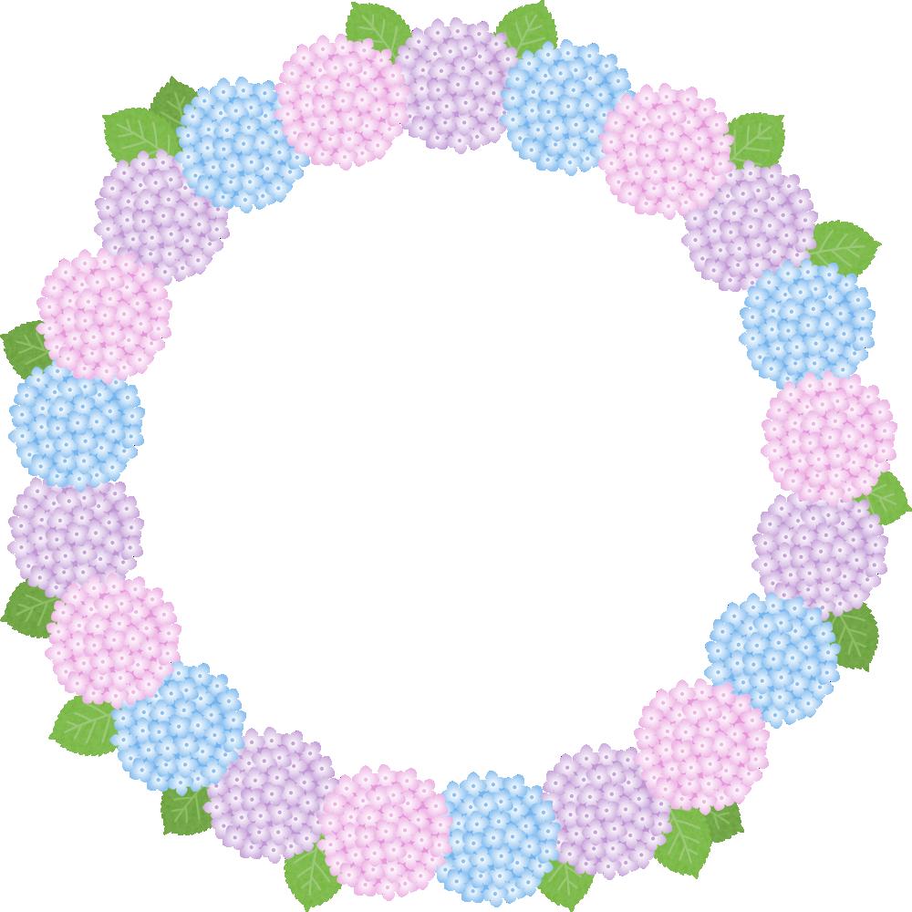 紫陽花(あじさい)の花のリース風フレーム枠イラスト
