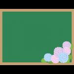 紫陽花(あじさい)を飾った黒板フレーム枠イラスト