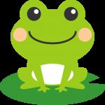 葉っぱの上に乗った可愛い蛙(かえる)のイラスト