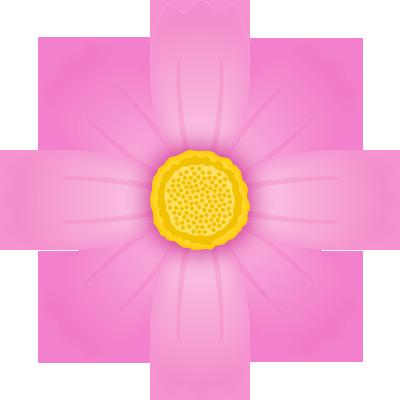 コスモスの花のイラスト<ピンク>