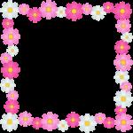 秋桜(コスモス)の花のフレーム囲み枠イラスト
