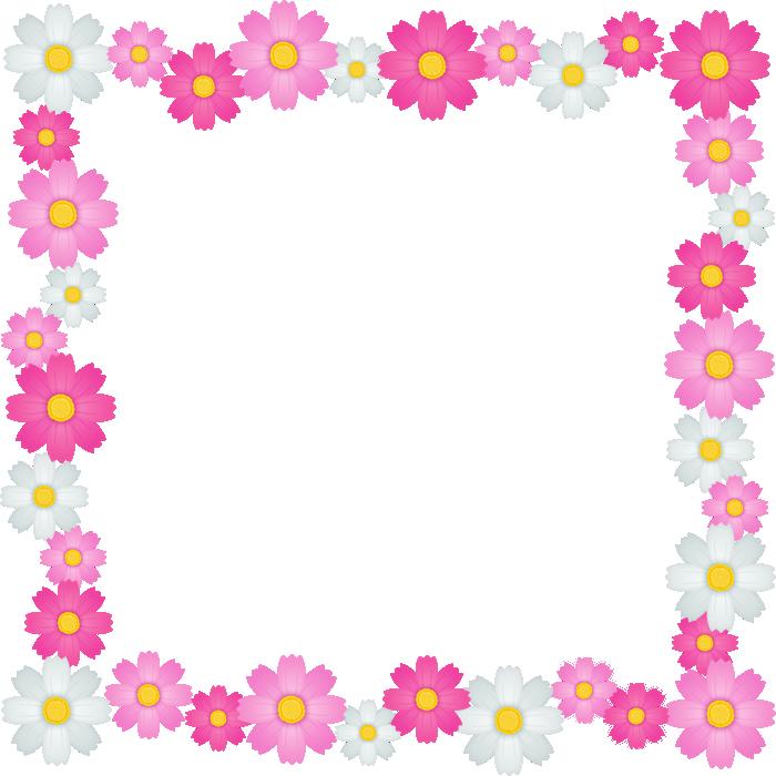 コスモスの花のフレーム囲み枠イラスト<正方形>