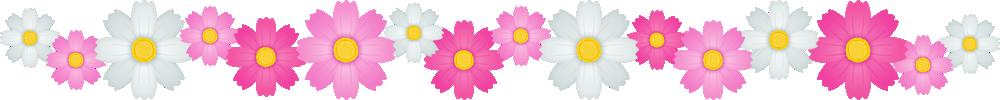コスモスの花のライン飾り罫線イラスト<大>