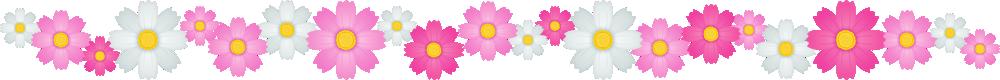 コスモスの花のライン飾り罫線イラスト<小>