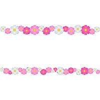 コスモスの花のライン飾り罫線イラスト