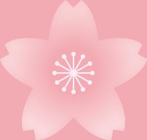 桜の花(淡い桜色・雄しべ白色)