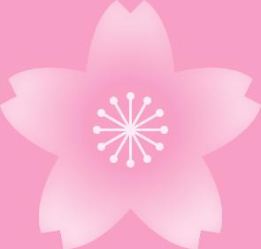 桜の花(薄いピンク・雄しべ白色)