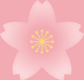 桜の花(淡い桜色・雄しべ黄色)