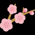 かわいい梅の木のイラスト